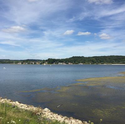 Lake - Isabelle